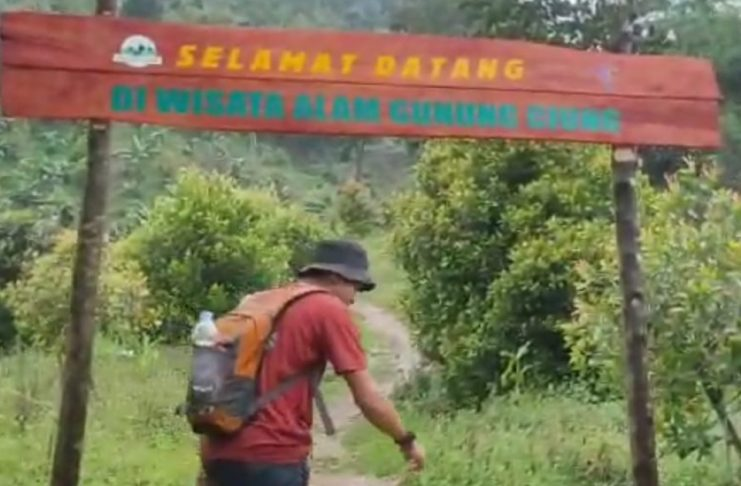 Mengenal Salah Satu Penghuni Gunung Ciung